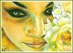 SeaRose Beauty - ACEO by Katerina-Art