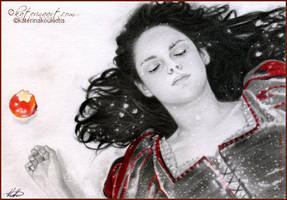 Snow white and the Huntsman by Katerina-Art