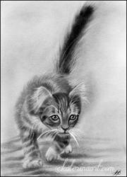 Cat sketch by Katerina-Art