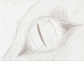 Unnamed Animal Eye by mbrsart