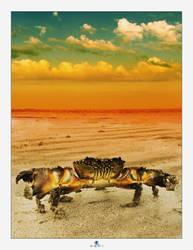 SunsetCancer2 by geci
