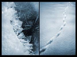 Winter Chill by freakyhedgehog
