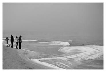 sledge on the beach by Wiedzma13