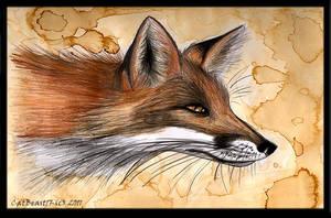 Coffee Fox by CatBeast17