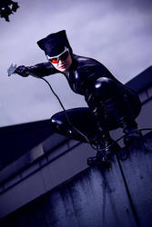 Batman ~ Catwoman by leashed-freak