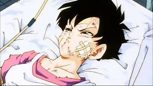 Videl by neo-sunglasses
