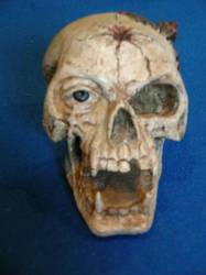 skull - E-stock by HorrorStocks
