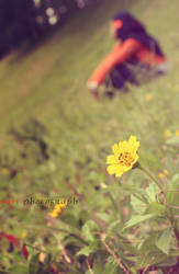Mellow Sunshine by Vieyupie