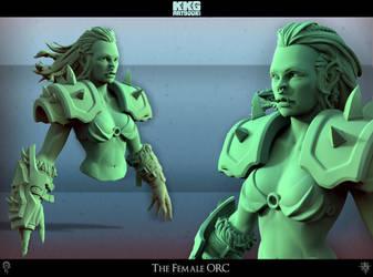 The Female Orc by Ichidann