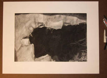 Charcoal - 'Microscopic' by jrice