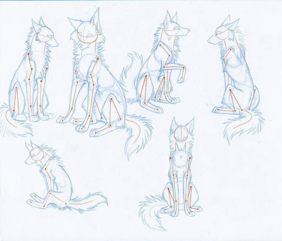 wolf front poses - 736×629