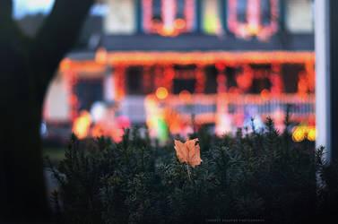 wonderful holiday memories by lovemyscars