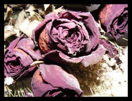 Funeral Rose by LookingGlassArt