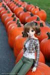 Aki and pumpkins :D by chun52