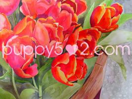 tulips in watercolour by chun52