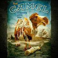 White Camel by inObrAS