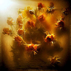 Memory Of Yasemin by inObrAS