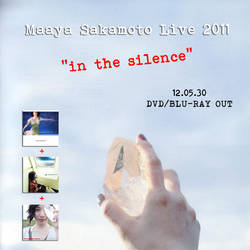 Live 2011 'in the silence' by countdown65
