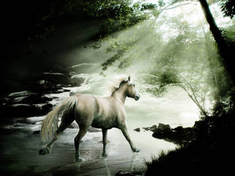 Into the Light by MelloYello