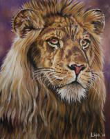 Lion Portrait by Face-Reality
