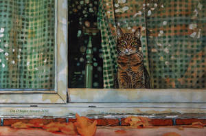 Indoor Cat by Face-Reality