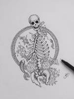 Skeleton by msannaelise