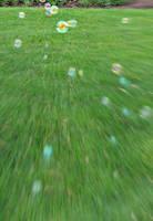 bubbles by Penguino170