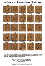 25 essential expressions by Nim41