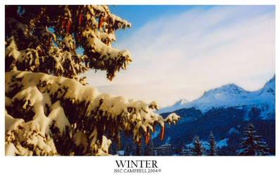 Winter by Bad-Company-101