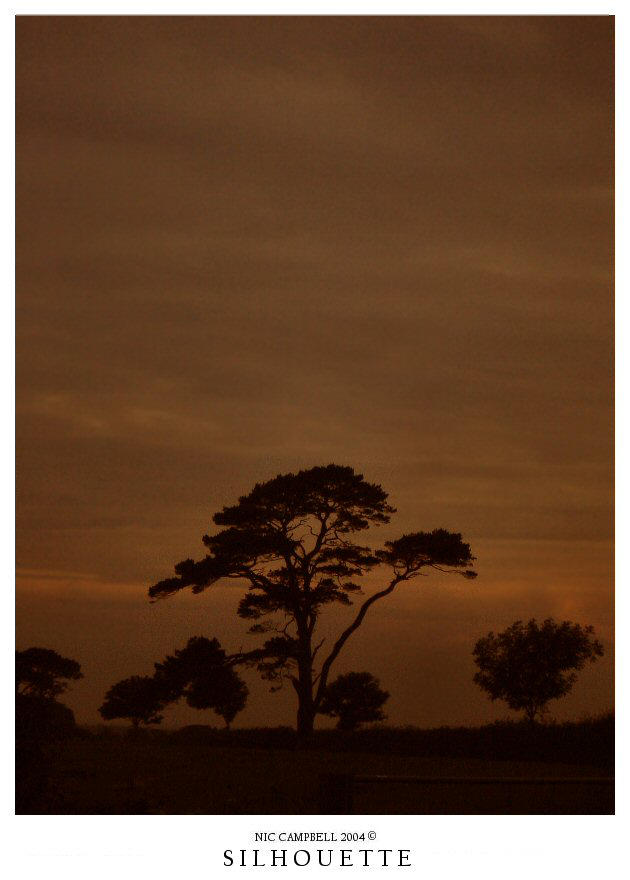 Silhouette by Bad-Company-101