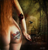 The Red Head by jhutter