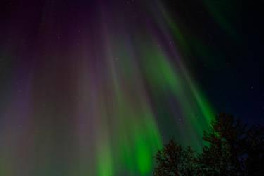 Aurora by janip