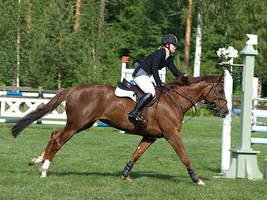 Finnderby 2 by wakedeadman