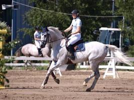 Gallop 2 by wakedeadman
