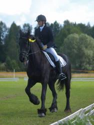 friesian mare, dressage august7 by wakedeadman