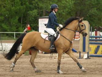 Buckskin pony by wakedeadman