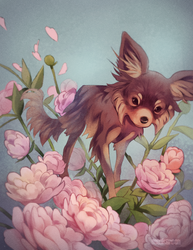 Pet Portrait: Sora by cheepers