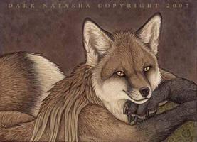Casual Fox by darknatasha