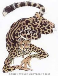 King Cheetah by darknatasha