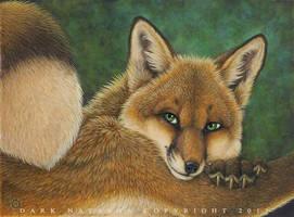 Foxylee by darknatasha