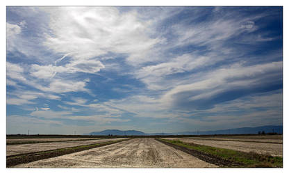 Delta del Ebro I by rocarias
