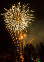 SGD2012 Firework 1 by JoeGP