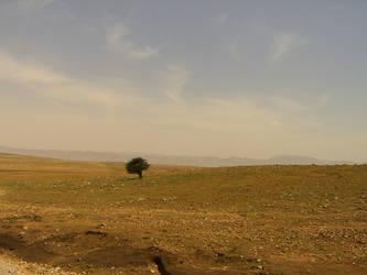 Morocco 13 by feclafra