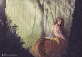 Centaury by eviaan-art