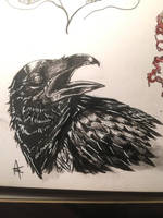Doodle of a crow by MagnoliaCrimes