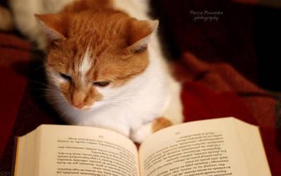 Yuna, the reader :3 by panna-poziomka