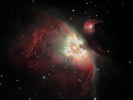 M42 Orion Nebula by Ed-Head73