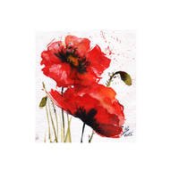 poppies by ZayatsT