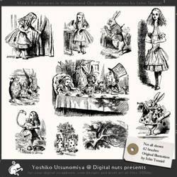 Alice in Wonderland by nutspress