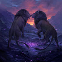 Lions by sandara